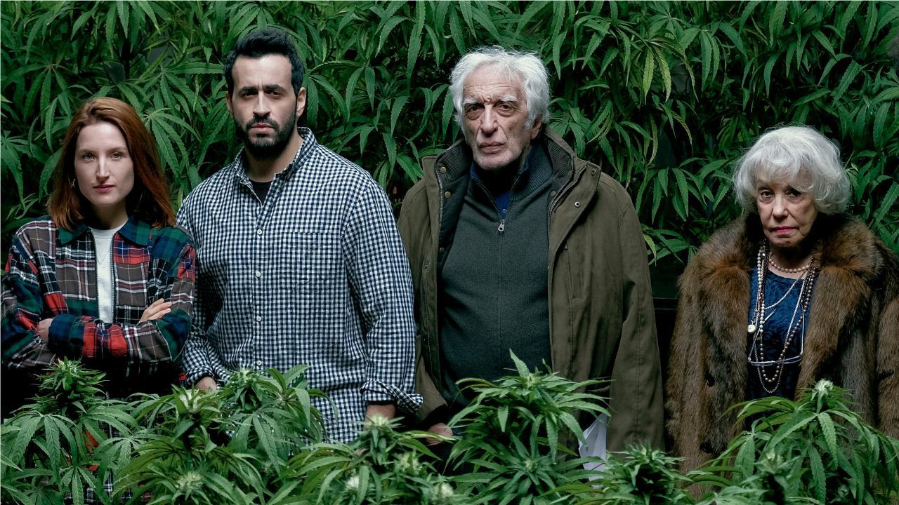Darmon weed.jpg